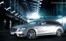2013 Mercedes-Benz CLS 63 AMG Shooting Brake