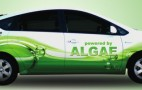 Want To Go Even Greener? Power Your Prius on...Algae ?!?!?