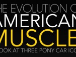 American Muscle infographic by CarDomain