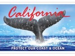 California's New Whale Tail Plate. Image: California Coastal Commission