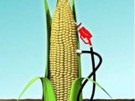 Corn Ethanol Pump