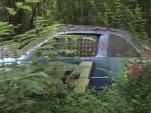 Dale Earnhardt Jr.'s race car graveyard