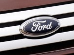 Ford Flex grille