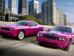 Furious Fuscia Challenger