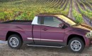 Havelaar Bison electric pickup