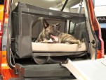 Honda Dog Friendly Element
