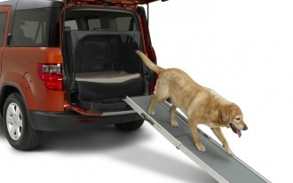 Do Dogs Leave A Larger Footprint Than SUVs?