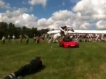 Horse Jumps Tesla Roadster