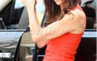 Janice Dickinson Is A Cougar On The Range (Rover)
