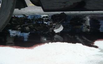 Cherokee SRT8 Trashes Its Tranny