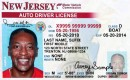 Sample driver's license