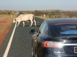 Tesla Model S on Australia's Northwest Coastal Highway  [photo: Robert & Robin]