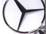 The Mercedes-Benz logo.