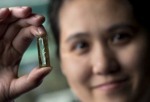 Experimental nanowire-based battery cell recharges 100,000 times or more