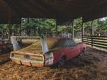 1969 Dodge Charger Daytona barn find - Image via Mecum Auctions