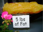 5 lbs. of fat