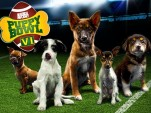 Animal Planet's Puppy Bowl