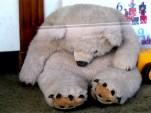 Bear Slump