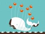 BP fail whale