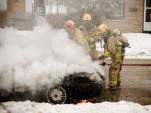 Impala On Fire