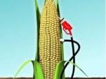 Corn Ethanol Pump