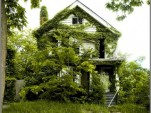 'Feral House' by James D. Griffioen