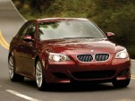 Five youths killed in BMW M5 crash