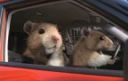 2011 New York Auto Show: Kia Hamsters Take Top Honors From Nielsen