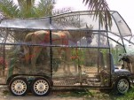 Naturmobil Gives a New Meaning To Green Horsepower