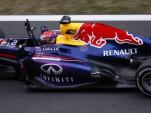 Sebastian Vettel after winning the 2013 Formula One Japanese Grand Prix