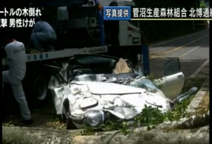 Toyota 2000 GT crushed by falling tree screencap