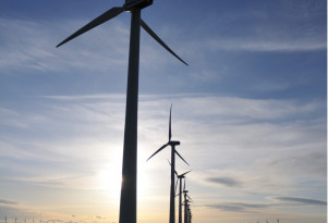 All renewable energy types to be cost-competitive by 2020: report